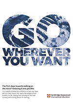 Go wherever you want poster